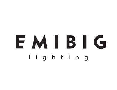 Identyfikacja wizualna - EMIBIG