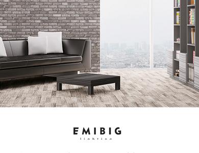 Serwis internetowy + sklep wykonany dla firmy EMIBIG